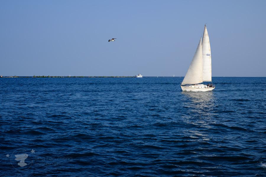 sail chicago lake - ting fen zheng