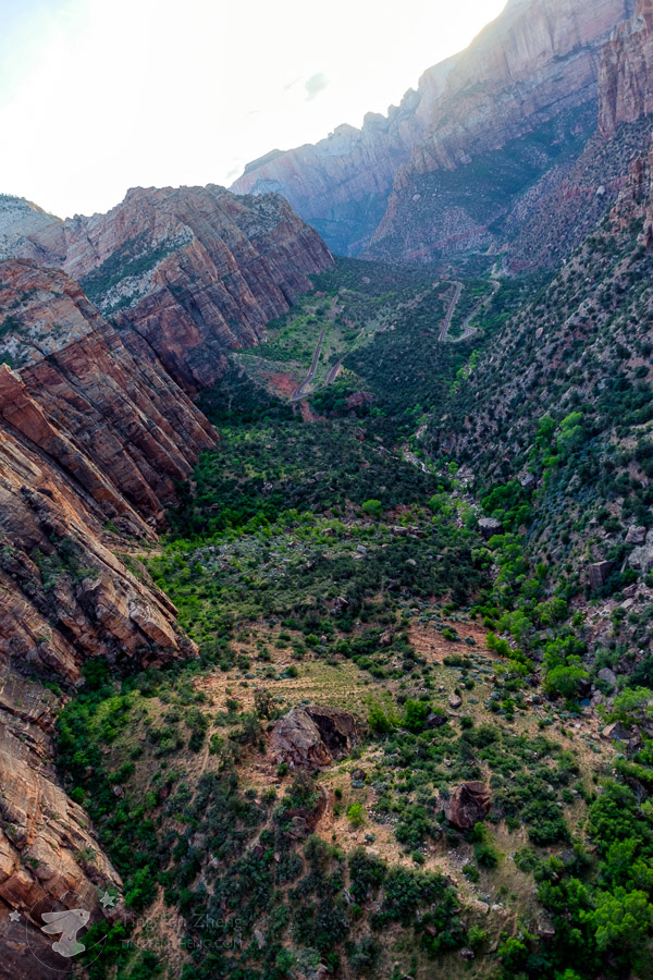 Zion - Canyon Overlook view