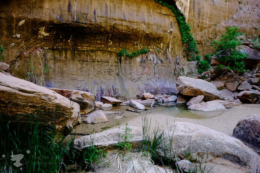 Zion National Park - Sinawava Trail