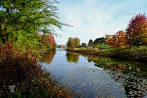 botanic garden - ting fen zheng