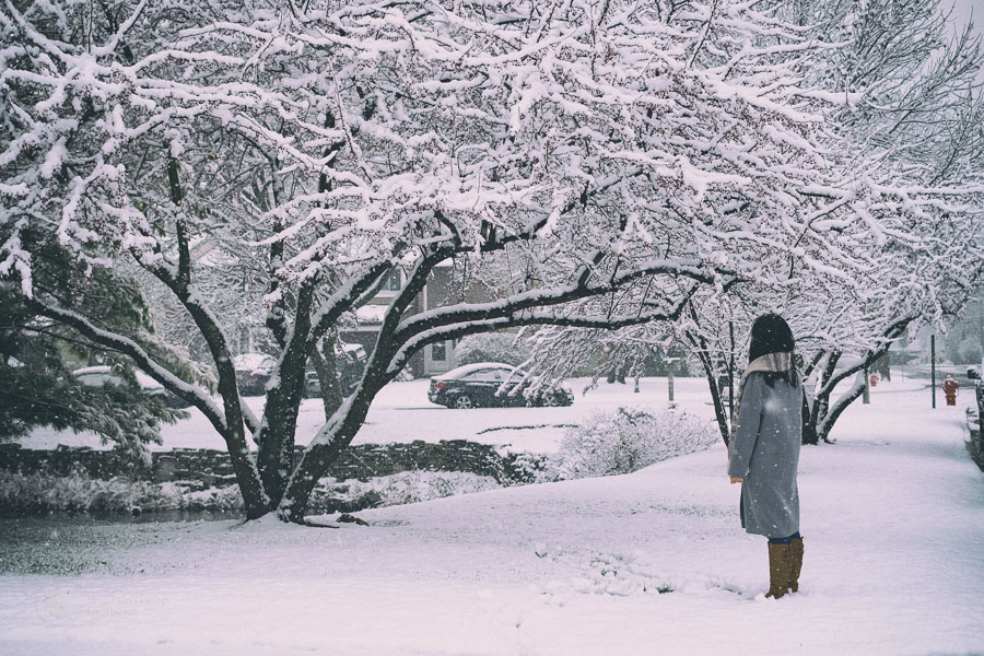 person standing in the snow with tree - ting fen zheng
