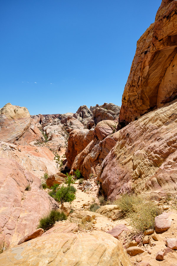 Valley of Fire - ting fen zheng